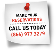 make you reservations
